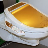 Electronic Bidet Covers: Selection Tips and an Overview of the Best Manufacturers