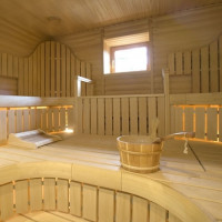 Ventilation in the steam room: examples of proven schemes and analysis of the rules of arrangement