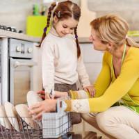 Dishwashers Zanussi (Zanussi): ranking of the best models, advantages and disadvantages of dishwashers, reviews