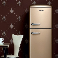 Gorenje refrigerators: review of the range + what to look for before buying