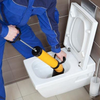 What to do if a toilet clogged: how to diagnose a blockage and eliminate it