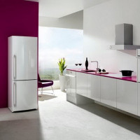 Refrigerators Don: reviews, an overview of the 5 best models, recommendations for choosing