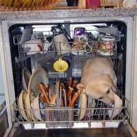 What you can and cannot be washed in a dishwasher: features of washing dishes from different materials