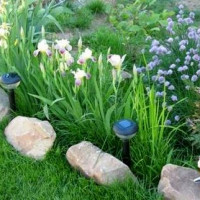 Solar lawn lamps: device, how to choose + installation nuances