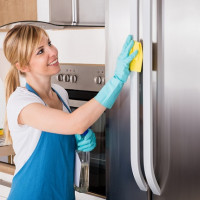 How to wash your refrigerator: an overview of the best care and cleaning products