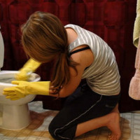 How to clean the toilet from urinary stone, rust and other deposits: the pros and cons of various methods
