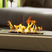 Fireplaces on biofuel: device, types and principle of action of bio-fireplaces