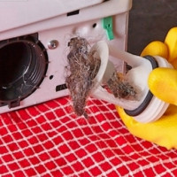 How to clean a filter in a washing machine: an overview of best practices