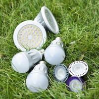 Lampes LED pour la maison: quelles ampoules à diode sont les meilleures, aperçu des fabricants de lampes LED