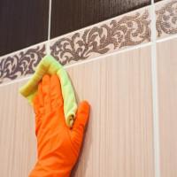 Kaip pašalinti grybelį vonios kambaryje: geriausi liaudies ir profesionalūs būdai