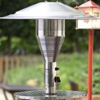 Kā izvēlēties gāzes sildītāju vasaras uzturēšanai: izvēloties ierīci āra apkurei