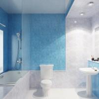 Vonios kambarys pagamintas iš plastikinių plokščių: plokščių įvairovė + greitas dekoravimo vadovas