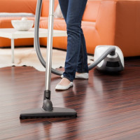 The best vacuum cleaners for laminate flooring: ranking of the best models and tips for potential buyers