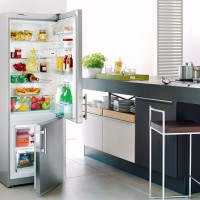 How to choose the best Nou Frost refrigerator: 15 best models + tips for customers