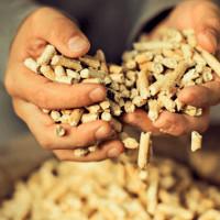 Quel est le meilleur et le moins cher - granulés ou porte-gaz? Comparaison des fonctionnalités clés