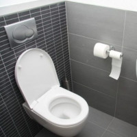 How to clean a blockage in the toilet: a comparison of the best methods and equipment