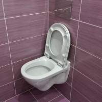 How to choose a hanging toilet: which is better and why + manufacturers overview