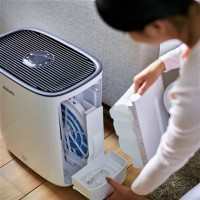 How to clean the humidifier from scale and mold at home: the best ways + cleaning instructions