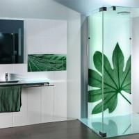 Types de douches: variétés, meilleurs fabricants + conseils de sélection