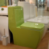 Monoblock toilet: device, pros and cons, how to choose