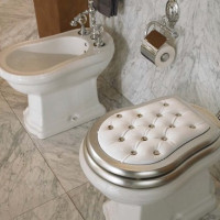 Lid for toilet: varieties, selection tips, installation instructions