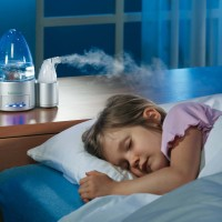 What are humidifiers: the main types, their features + tips for customers to choose