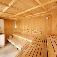 Ventilation du bastu dans le bain: avantages et inconvénients + instructions pour la disposition