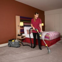 Vitek vacuum cleaners: an overview of the best models on the market and recommendations to potential customers