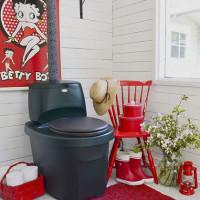 Kuri sausa spintelė yra geresnė: skysta ar kompostuojanti? Ką pirkti: durpės ar cheminis variantas