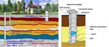 How to find water for digging a well in a summer cottage