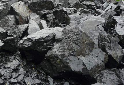 Shungite - sorbant naturel