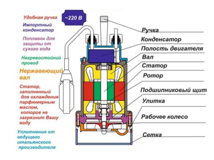 The layout of the centrifugal pump Gnome