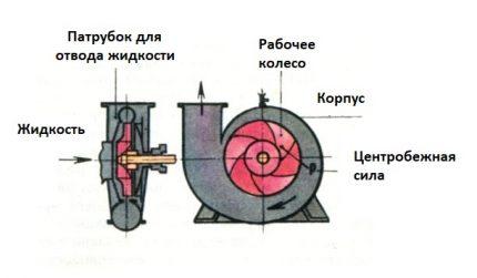 The principle of the pump Aquarius