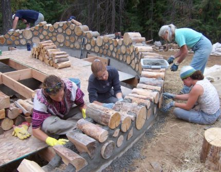 Collective construction of an eco-house