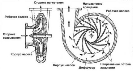 The principle of operation of a centrifugal pump