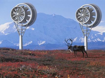 Turbinų vėjo generatorių veikimas tundroje