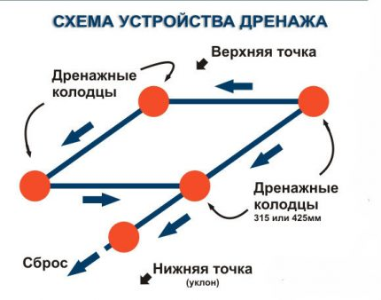 Drenažo schema