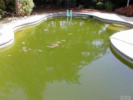 Pool pollution