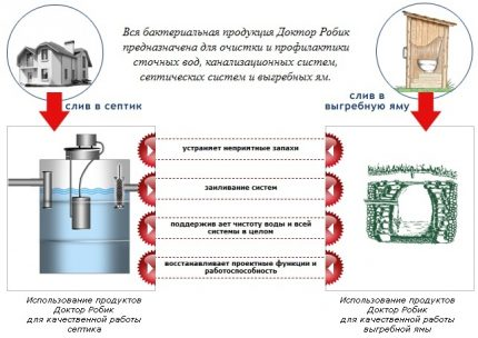 Scope of products of the brand Dr. Robik