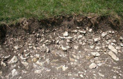 Rock type soil
