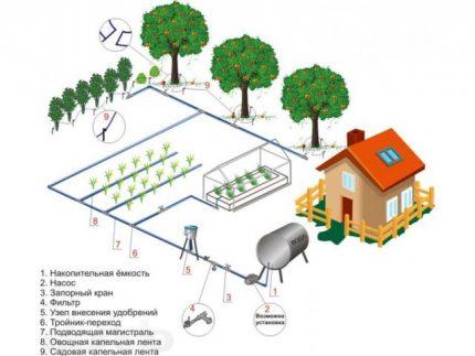 Drip irrigation scheme