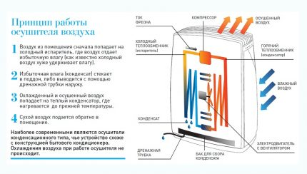 The device and principle of operation of a monoblock dehumidifier for the pool
