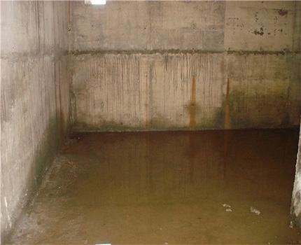 High moisture cellar