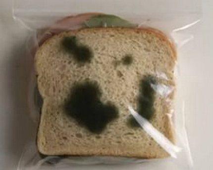 Melna pelējuma uz maizes