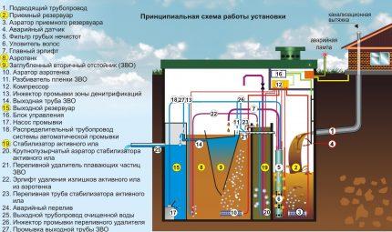 Bioloģiskās attīrīšanas iekārtas shēma