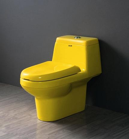Acrylic toilet