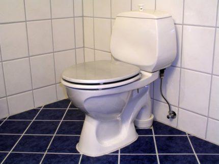 Vertical flush toilet