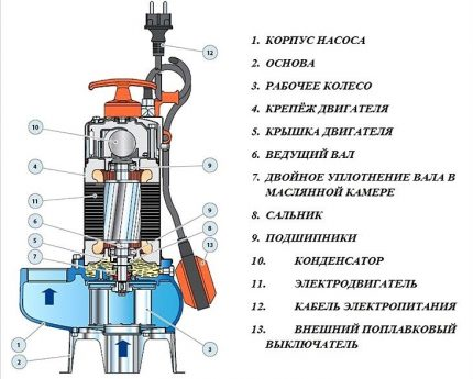 The device and components of the fecal pump