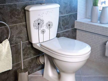 Oblique toilet