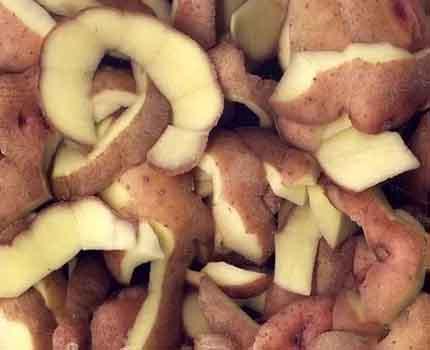 Peler les pommes de terre